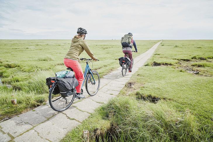 Allons-y pour un road trip à vélo !